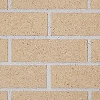tumbleweedvelour-cropped
